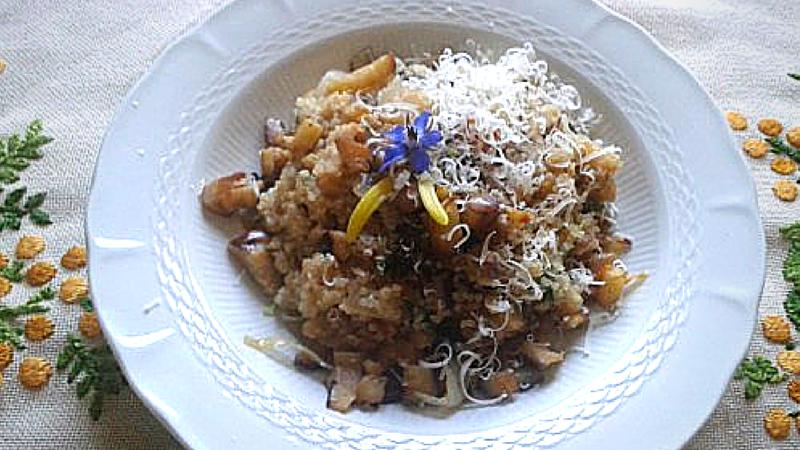 ricetta-quinoa-melanzane