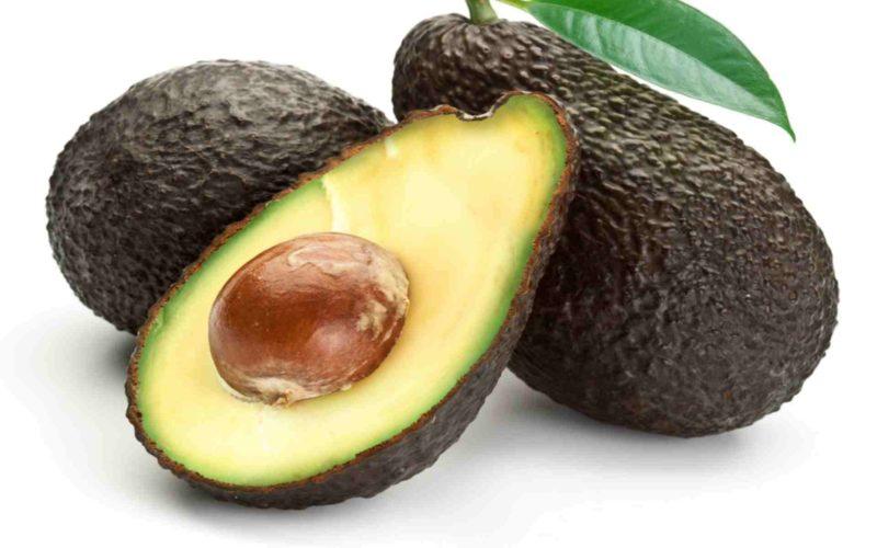 13_Avocado